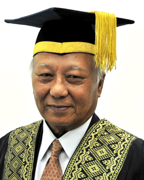 YBhg Dato' Dr Amir Abbas