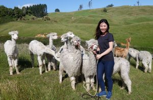 Genieve Yeo Ee Chia, an IMU Biomedical Science student, shares her internship experience in New Zealand.
